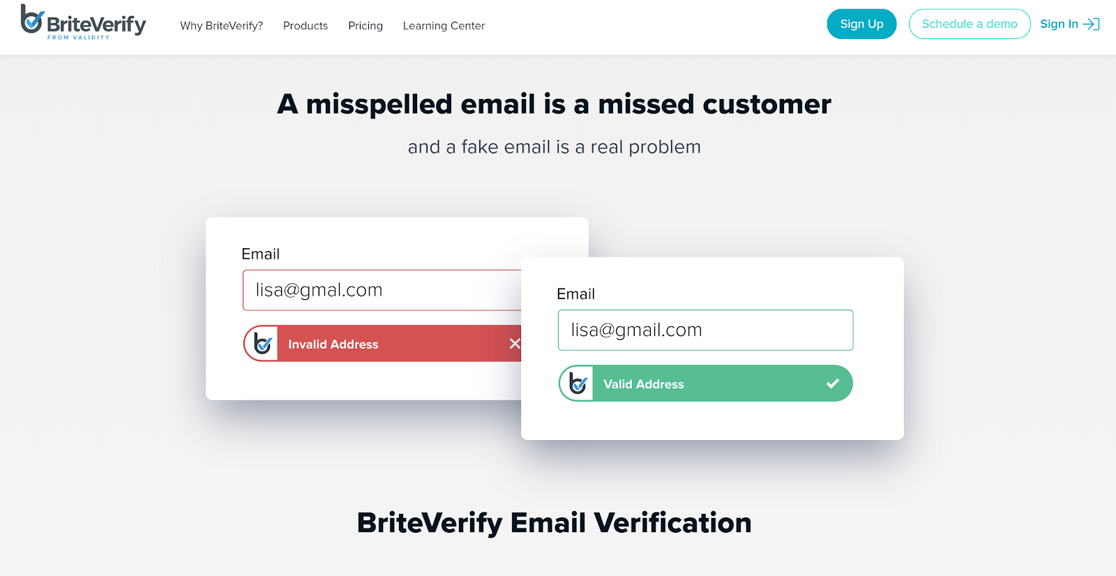 Brite Verify screenshot for checking large email lists.