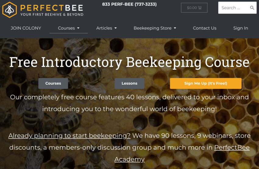 Beekeeping courses show the value of advertising a niche course.