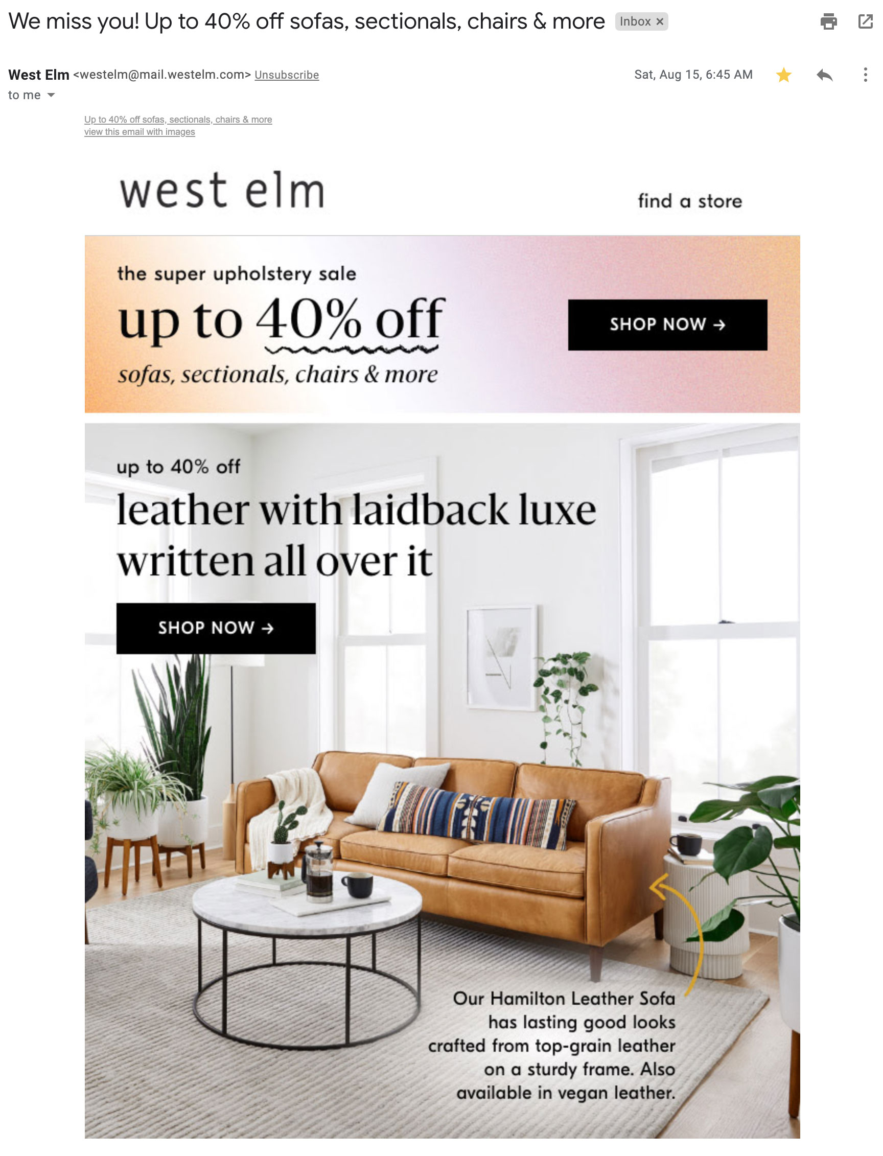 West Elm's win-back email.